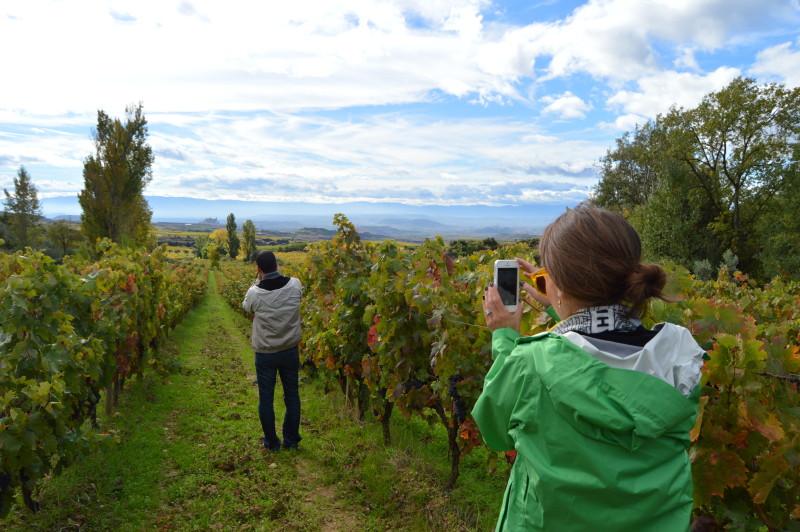 Wine Cave Day Rioja tour