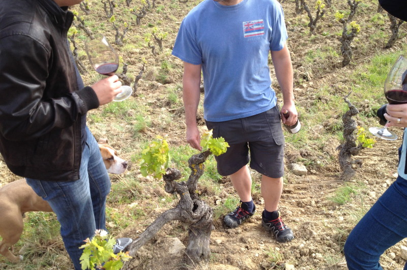 Discover the Local Life Rioja