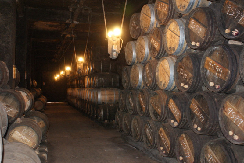 Rioja Wine Cave Day